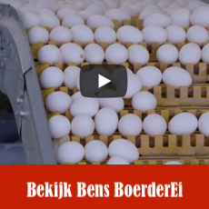 https://hetscharrelei.nl/het-bedrijf/film/