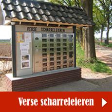 https://hetscharrelei.nl/eierenverkoop/